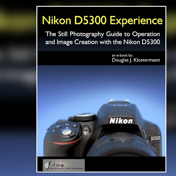 The Best Guide for the Nikon D5300